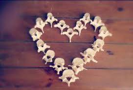 Spinal bones in shape of a heart