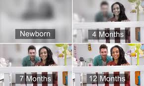 vision throughout the first year of birth